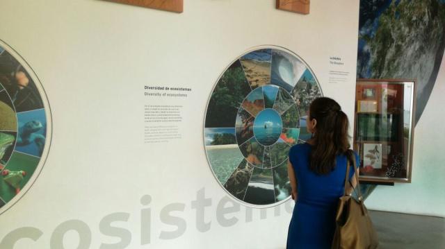 Museos en Panamá