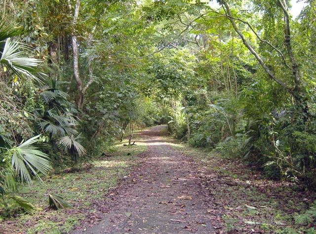Parques en Panamá