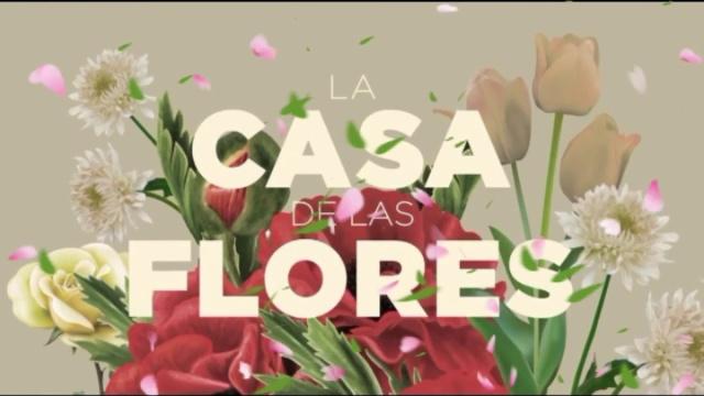 Canción del panameño, Carlos Mendez, es parte de La Casa de las Flores 2